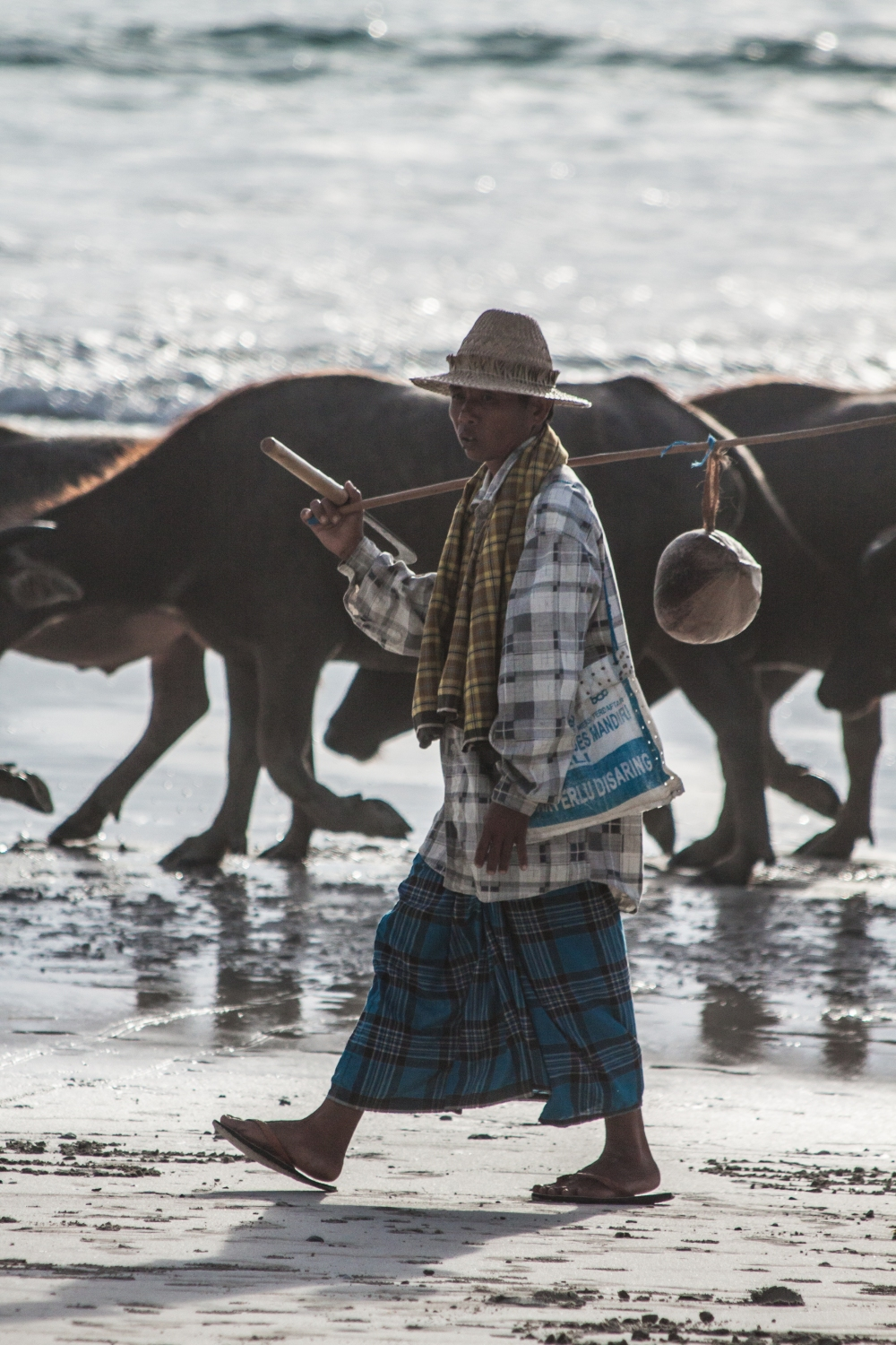 Buffalo_Farmer_lombok_beach_Travel_Photographer